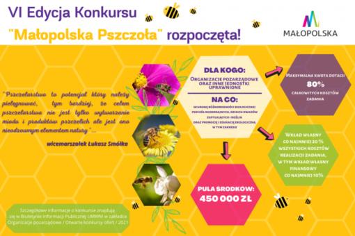 Blisko pół miliona na inicjatywy pszczelarskie